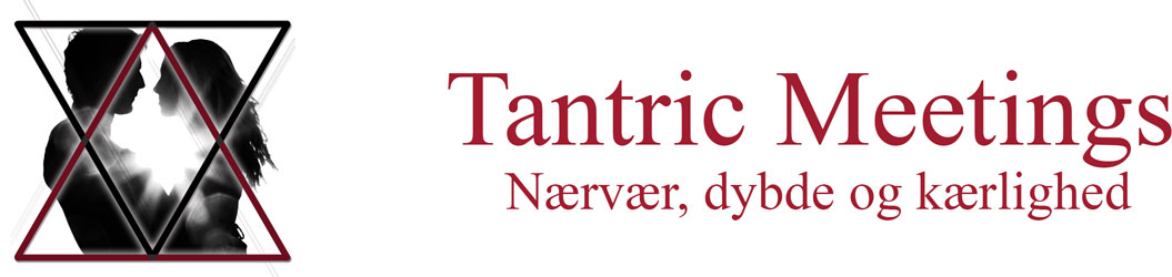 Tantric Meetings logo